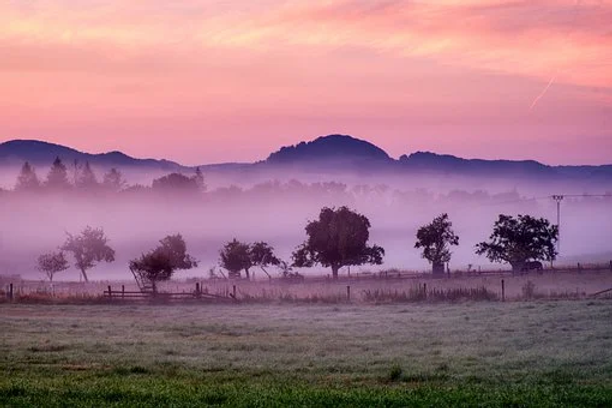 Misty sunrise.webp
