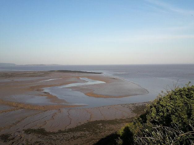 Tidal Flats, June, 2020.jpg