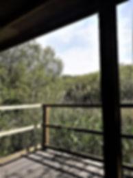 Shapwick Shelter.jpg