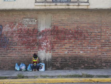 Reflexiones sobre la situación histórico-lingüística y su poder en México