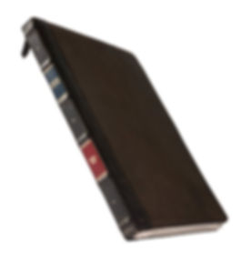 BookBook-Vol-2-iPad-Pro-Concealment-Case-09_edited.jpg