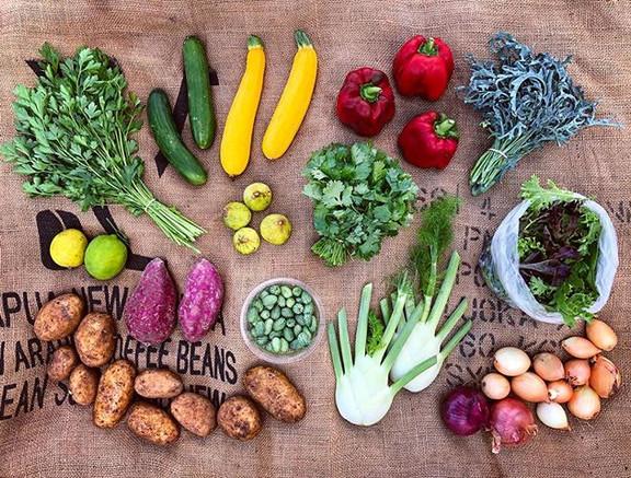 Veggies 💚 _Parsley, cucumbers or tomato