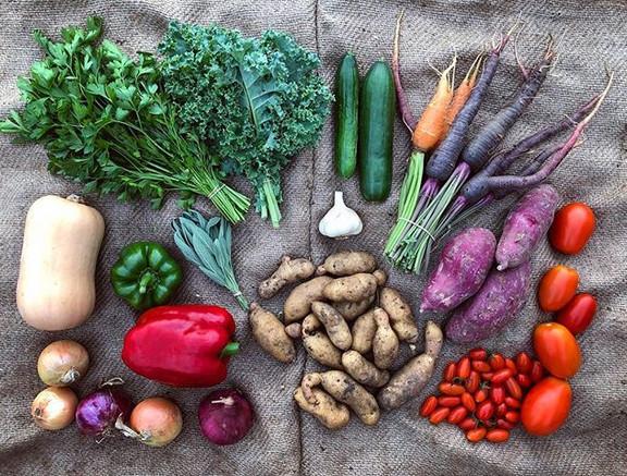 Good morning 🌻 this week's veggies_ oni