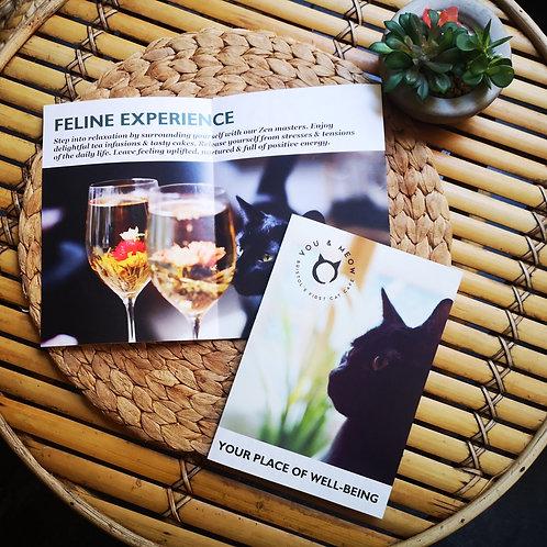 Feline Experience Gift Voucher for 2