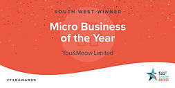 FSB-2063-SW-Awards-Win-TW-MICRO.jpg