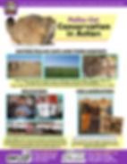 madpallascat-conservation.jpg