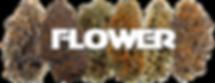 Flavors Detroit Menu Section Flower V2.p