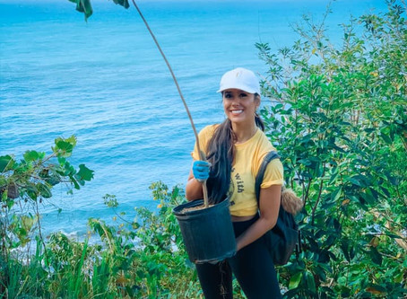 Over 250 Trees Planted in Puerto Rico