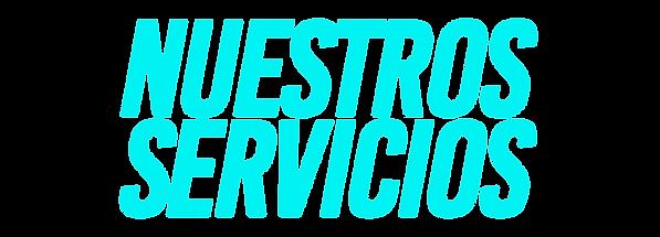 NUESTROS SERVICIOS.png