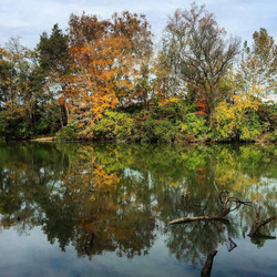 reflection picture fall