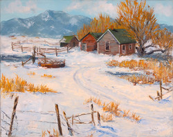 pallet of snow