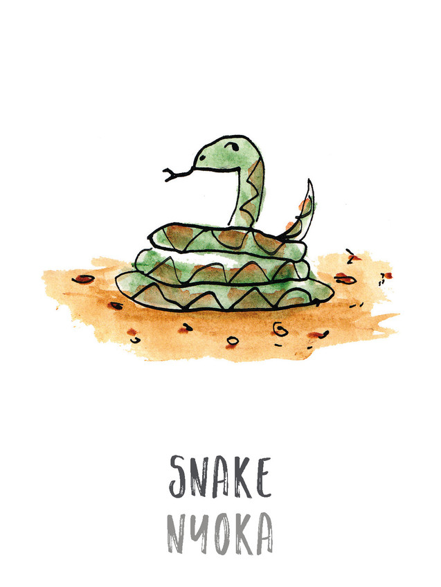 Snake / Nyoka