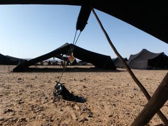Adventures in the Desert