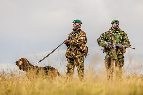 rangers-11.jpg