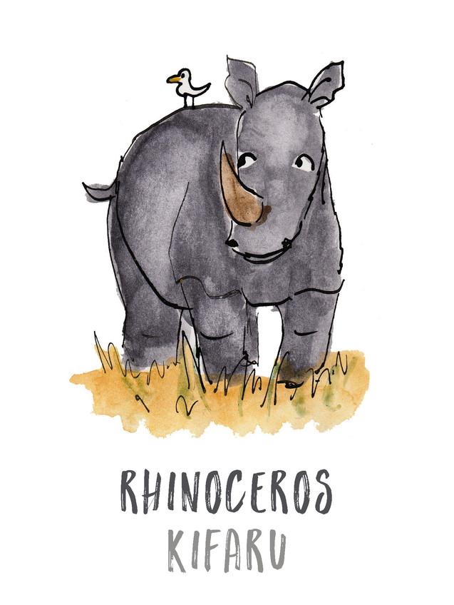 Rhinoceros / Kifaru