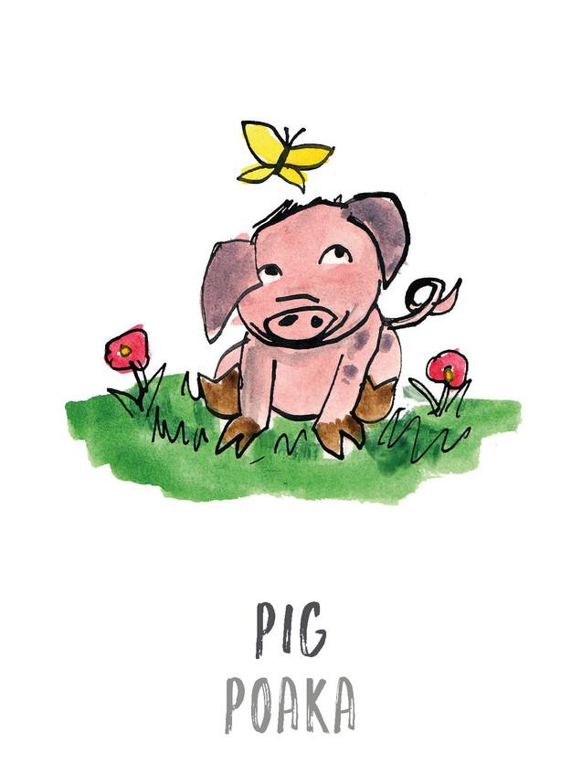 Pig / Poaka