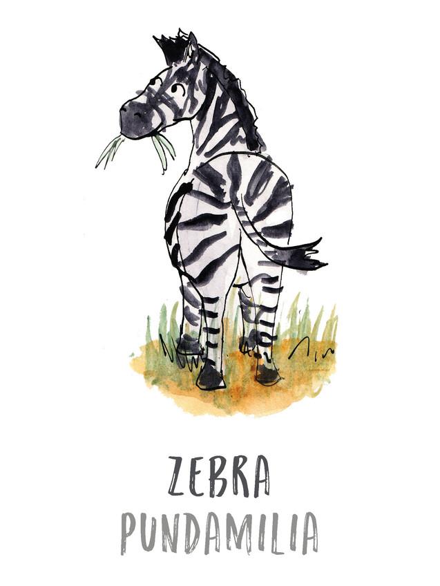Zebra / Pundamilia