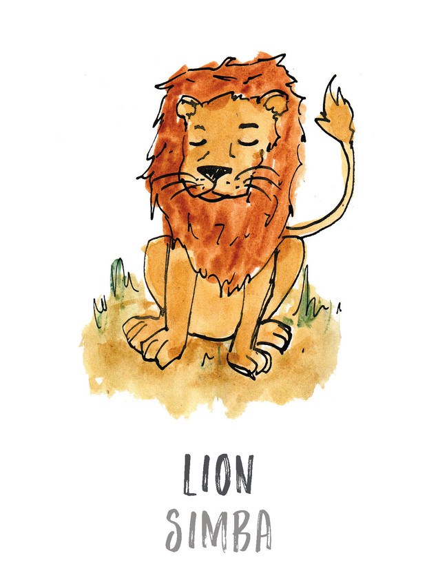 Lion / Simba