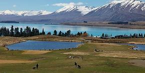 the-cairns-golf-course.jpg