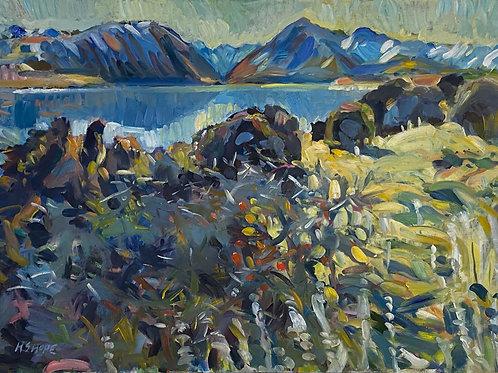 Winters Day Lake Tekapo – Henry Hope