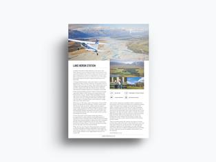 Lake heron Flyer