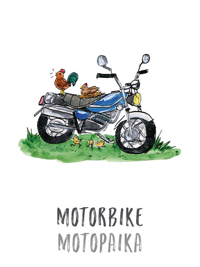Motorbike / Motopaika