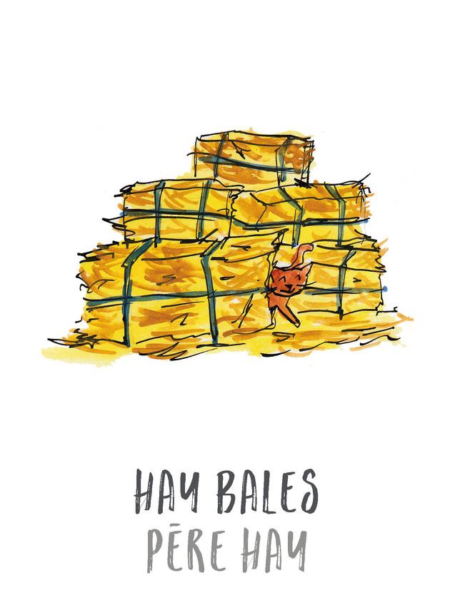 Hay Bales / Pere hay