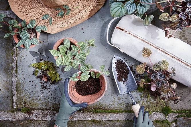 garden-kit-2.jpg