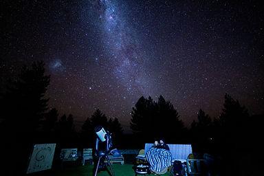 Chameleon Stargazing
