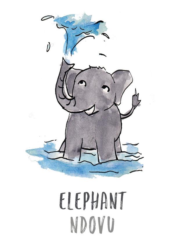 Elephant / Ndovu