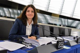 Aké nástroje môže europoslanec využiť?