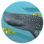 whaleshark_icon.png