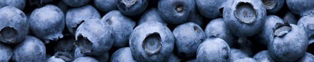 Blueberries banner1.jpg
