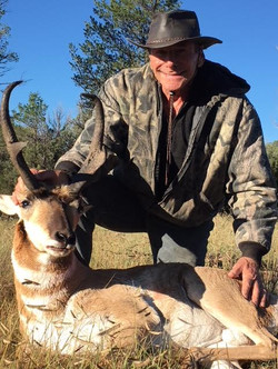 NM has some awesome Pronghorn