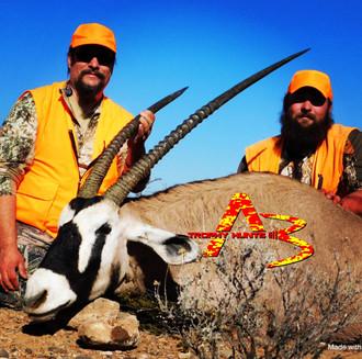 39 in Bull oryx