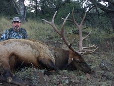 Now Is The Time To Book Your NM Elk Hunt & Apply For The 2018 Draw Contact Jordan Hall For More