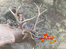 A3 Trophy Hunts New Mexico