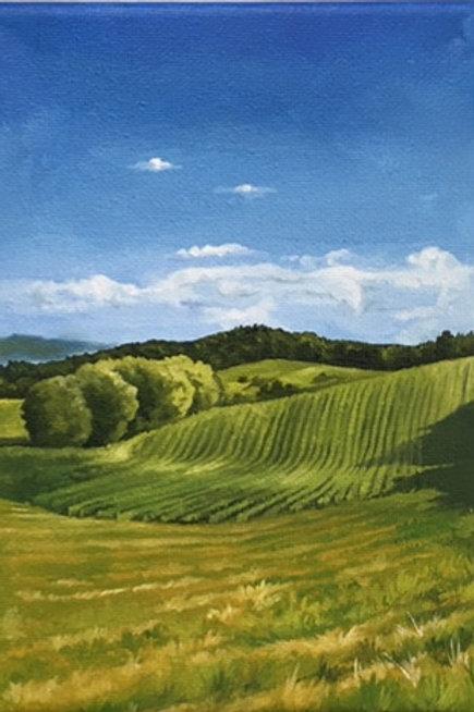 Donahue View