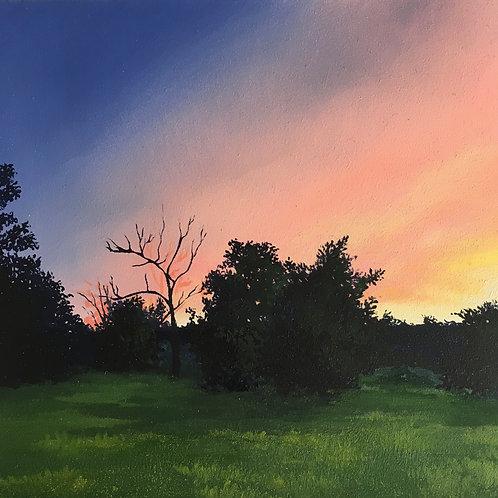 Evening Sunset Study II