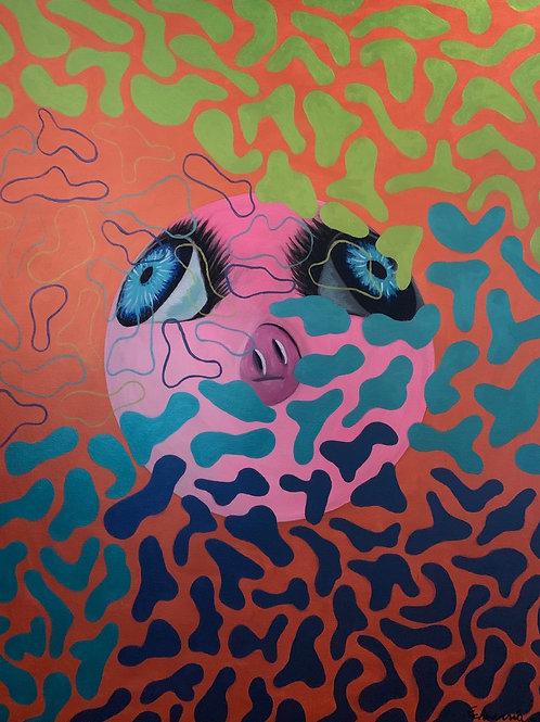 Eduardo Echeverría - Camouflage pork planet