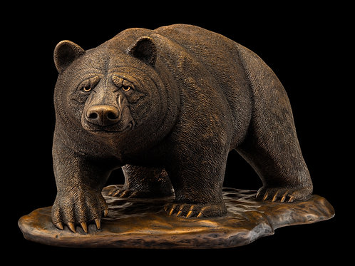 Jesse Nusbaum - American bear