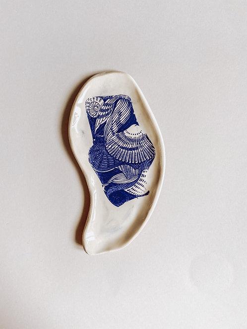 paterka morska #2