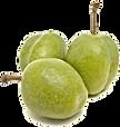 Ameixa de Kakadu - elemento do Sérum para o dia da linha SPA Botanical - Jeunesse