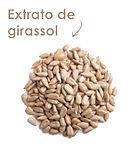 botanicals-extrato-de-girassol.jpg
