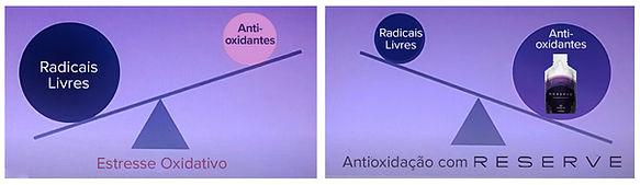 Balança do estresse oxidativo   RESERVE   Maria da Graça Congro
