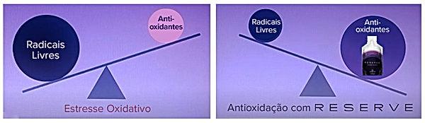 Balança do estresse oxidativo | RESERVE | Maria da Graça Congro