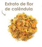 botanicals-extrato-de-flor-de-calendula.