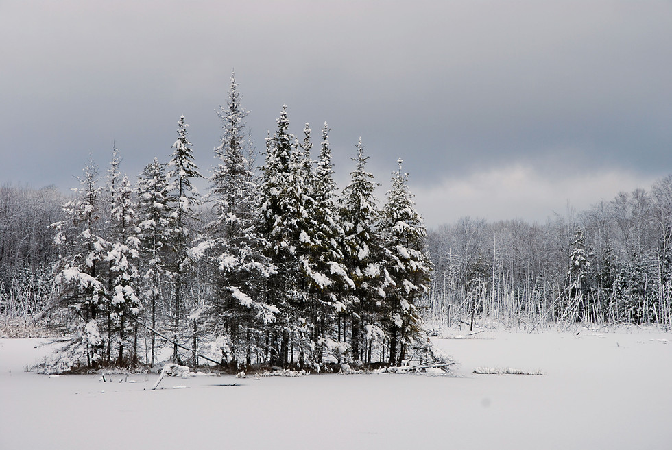 ISLAND IN THE SNOW