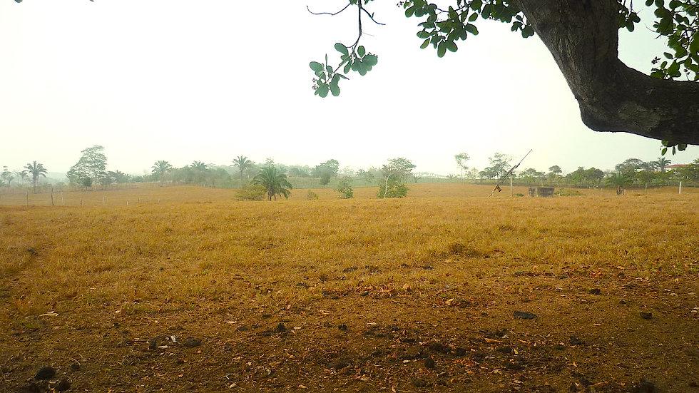 Terreno La Chorrera para desarrollo residencial
