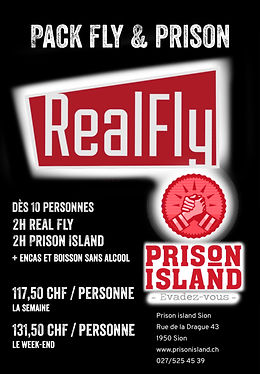 real fly.jpg